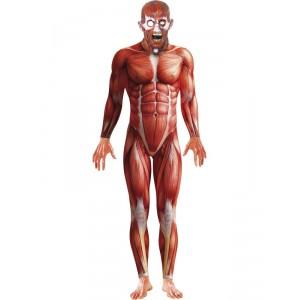 "Déguisement ""Anatomie"" - Halloween"