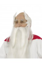Perruque et barbe druide Panoramix™